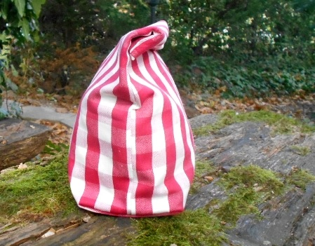 Red checkered lunch bag